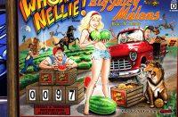 Whoa Nellie! Big Juicy Melons